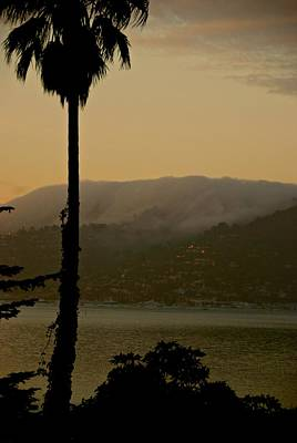Photograph - Sausalito Morning by Eric Tressler