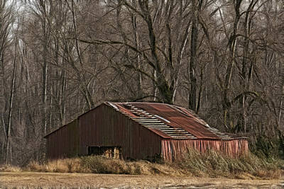 Photograph - Sauvie Island Barn by Wes and Dotty Weber