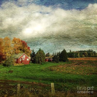 Photograph - Sauvie Island Farm by Charlene Mitchell
