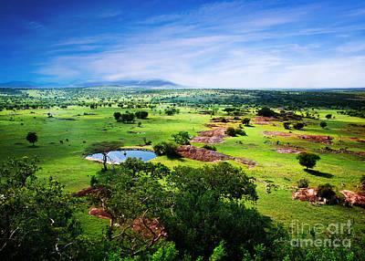 Adventure Photograph - Savanna In Bloom. Tanzania. African Panorama by Michal Bednarek