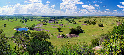 Photograph - Savanna Landscape In Serengeti by Michal Bednarek
