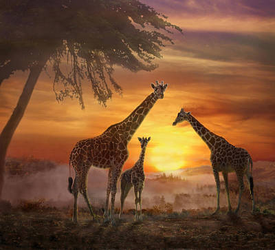 Photograph - Savanna Sunset by Melinda Hughes-Berland