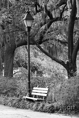 Photograph - Savannah Afternoon - Black And White 2x3 by Carol Groenen