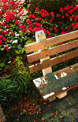 Painting - Savannah Bench by Daniel Bonnell