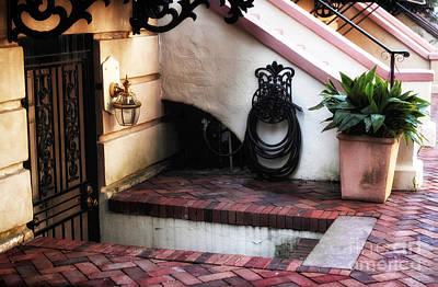 Photograph - Savannah Design by John Rizzuto