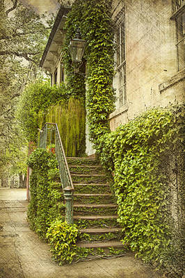 Savannah Doorway 1 Art Print by Carrie Cranwill