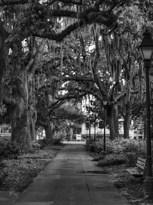 Photograph - Savannah - Forsyth Park 001 Bw by Lance Vaughn