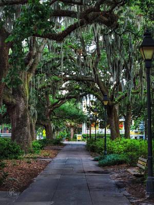 Photograph - Savannah - Forsyth Park 001 by Lance Vaughn