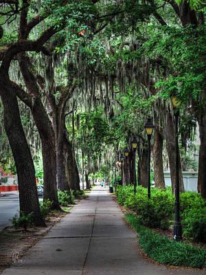 Photograph - Savannah - Forsyth Park 002 by Lance Vaughn