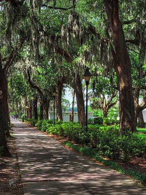 Savannah - Forsyth Park 004 Art Print
