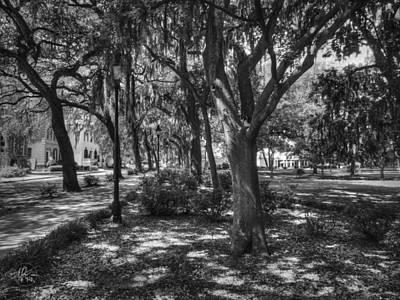 Photograph - Savannah - Forsyth Park 005 Bw by Lance Vaughn