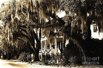 Savannah Fine Art . Savannah Old Trees Photograph - Savannah Georgia Haunting Surreal Southern Mansion With Spanish Moss by Kathy Fornal