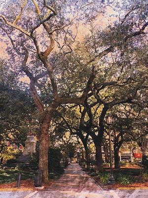 Photograph - Savannah Live Oak Canopy by Joe Duket