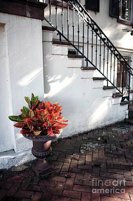 Photograph - Savannah Style by John Rizzuto