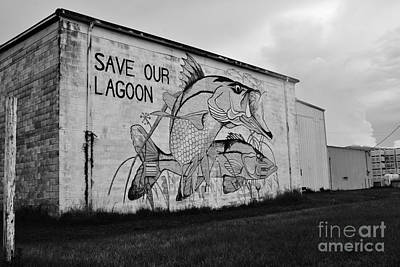 Photograph - Save Our Lagoon B W by Lynda Dawson-Youngclaus