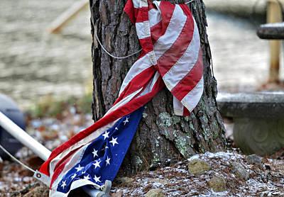 Save The Flag Art Print by Susan Leggett