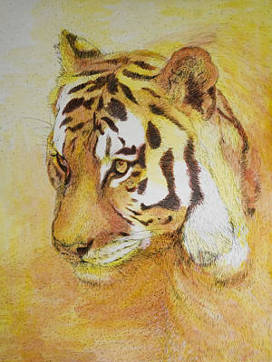 Painter Mixed Media - Save The Tiger by Shubnum Gill