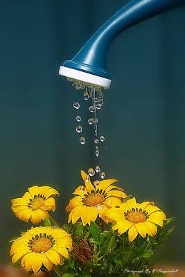 Saving Water 02 Original