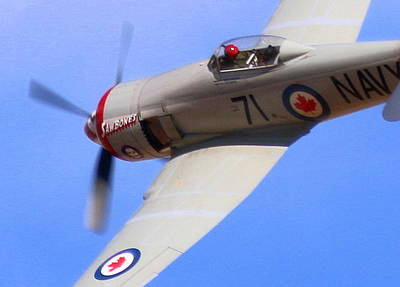 Photograph - Sawbones Hawker Sea Fury Rounds East Pylon At Reno Air Races. N71gb by John King