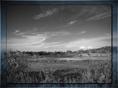 Monochrome Photograph - Sawgrass Lake No. 1 by Phil Penne