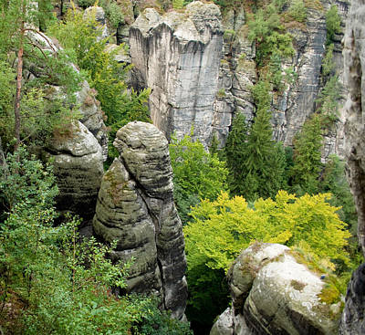 Photograph - Saxon Switzerland Nature. by Iryna Soltyska