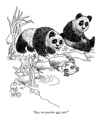 Water Reflections Drawing - Say, We Pandas Are Cute! by Joseph Farris