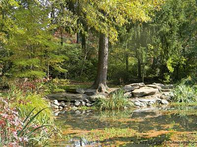 Photograph - Sayen Gardens Pond by Nance Larson