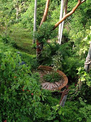 Sayulita  Wild Garden Art Print by  Tolere