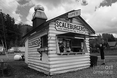 Photograph - Scaleburgers by Tikvah's Hope