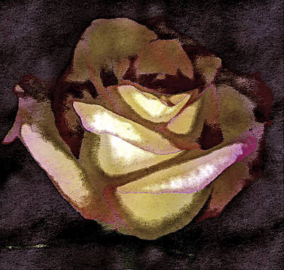 Digital Image Photograph - Scanned Rose Water Color Digital Photogram by Paul Shefferly