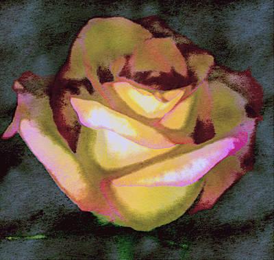 Digital Image Digital Art - Scanned Rose Water Color by Paul Shefferly