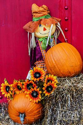 Photograph - Scarecrow And The Pumpkin by Elvis Vaughn