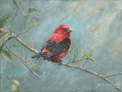 Scarlet Painting - Scarlet Tanager by Dreyer Wildlife Print Collections