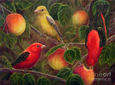 Scarlet Tanagers And Peaches Original by Tom Chapman