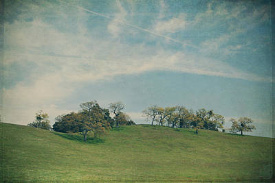 Textured Landscapes Digital Art - Scattered Along The Hilltop by Laurie Search