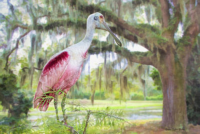 Roseate Spoonbill Photograph - Scene From The Deep South by Bonnie Barry