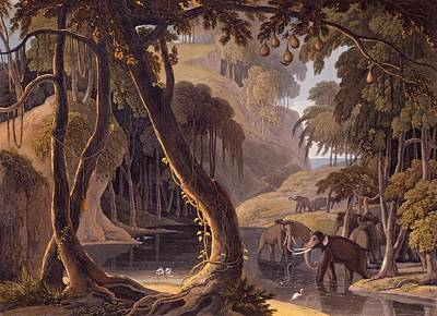 Herons Drawing - Scene In Sitsikamma - Elephants by Samuel Daniell