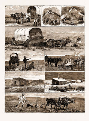 Scenes From An Emigrants Life In Manitoba Art Print by Litz Collection