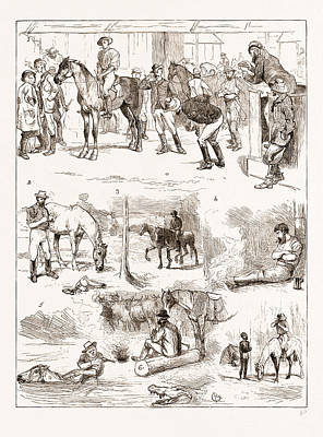 Night Out Drawing - Scenes Of Australian Life, 1876 1. Horse Sale by Litz Collection
