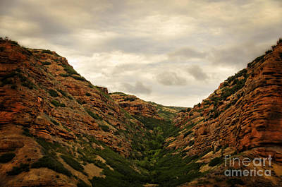 Photograph - Scenic Canyon In Utah by Donna Greene