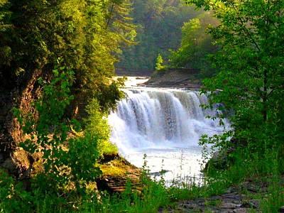Photograph - Scenic Falls by Rhonda Barrett