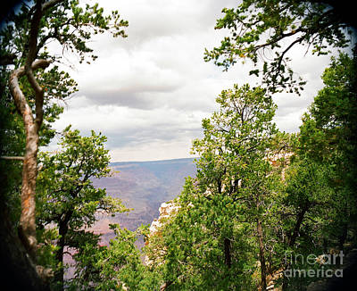 Photograph - Scenic Grand Canyon 19 by M K Miller