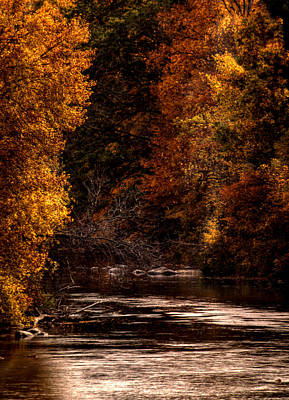 Scenic River Original by Thomas Young