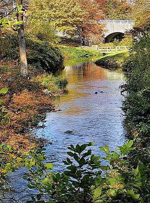 Photograph - Scenic Town Brook In Fall by Janice Drew