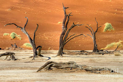 Scenic View At Sossusvlei Art Print
