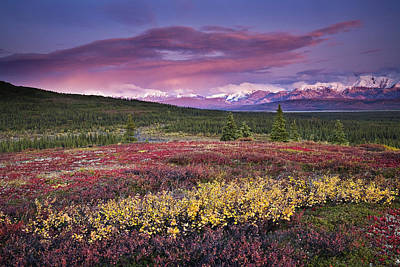 Scenic View Of Alpine Tundra With Art Print by John Delapp