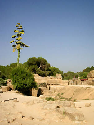 Photograph - Scenic View  Of Ancient Ruins by Caroline Stella