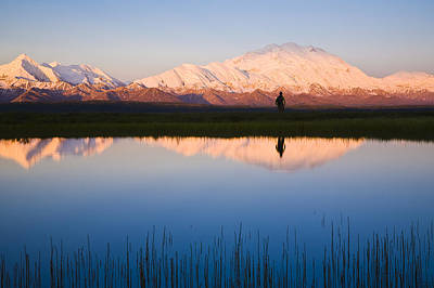 Scenic View Of Mt. Mckinley Reflected Art Print by Michael DeYoung