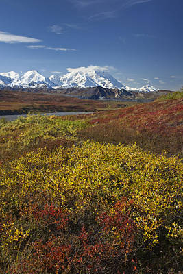 Scenic View Of Mt.mckinley From Art Print by John Delapp