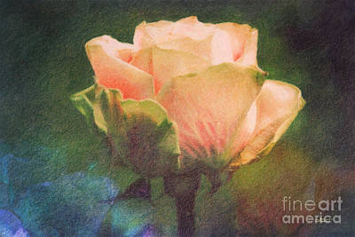 Photograph - Scent Of A Rose by Jutta Maria Pusl